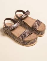 Chinese Laundry Palms Snake Womens Flatform Sandals