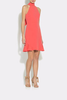 Shoshanna Roxbury Dress