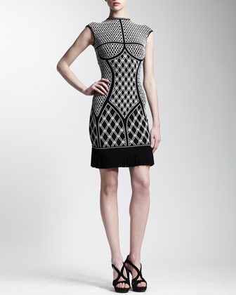 Alexander McQueen Pleated-Hem Printed Knit Dress