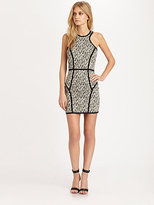 Parker Palms Piped Dress