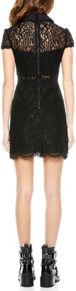 Alice + Olivia Ellis Lace Short Sleeve Sheath Dress