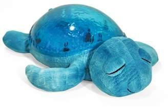 Cloud b Ocean Lights Turtle