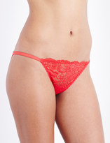 Mimi Holliday Amaryllis floral-lace briefs