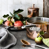 Williams-Sonoma Professional Copper Saucepan