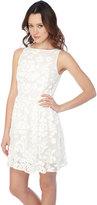 BB Dakota Sibley Dress