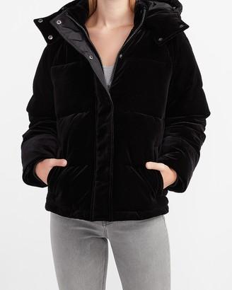 Express Hooded Velvet Puffer Coat