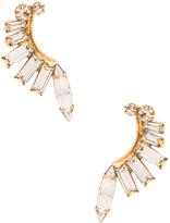 Elizabeth Cole Earring