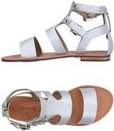 Geox Sandals - Item 11216951