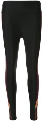 Side Panelled Performance Leggings