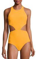 FLAGPOLE Lynn One-Piece Swimsuit