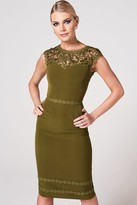 Paper Dolls Enzi Olive Lace-Trim Bodycon Dress