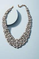 BaubleBar Kew Floral Collar Necklace