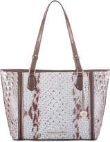 Brahmin Carlisle Medium Asher Tote