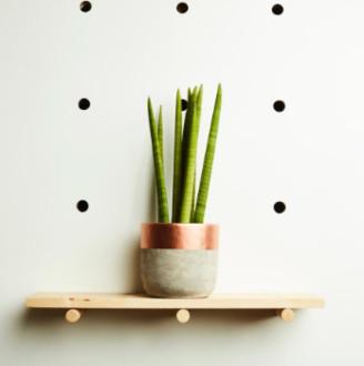 Hi Cacti - Large Copper Concrete Plant Pot - large | copper - Copper/Copper