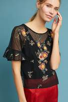 Maeve Embroidered Cadiz Top
