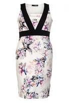 Quiz Curve Cream Floral Print Panel Dress