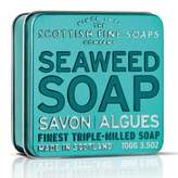 Scottish Fine Soaps Seaweed Soap in a Tin by 100g Bar)