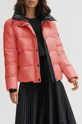Noize Bianca Front Zip Puffer Jacket