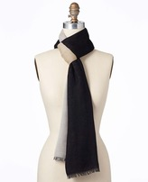 Ann Taylor Chic Colorblock Scarf