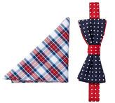 Alara Silk Washington Dots Bow Tie & Pocket Square Set