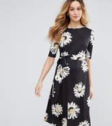 Asos Petite Midi Dress In Daisy Print