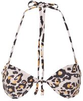 Somedays Lovin Somedays lovin' **leopard bikini top