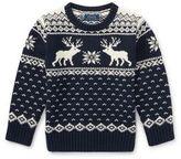 Ralph Lauren Little Boy's Reindeer Knit Sweater