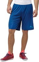 Puma EvoTRG TOUCH Soccer Training Shorts