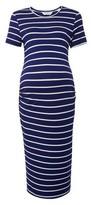 Dorothy Perkins Womens Dp Maternity Navy Bodycon Dress