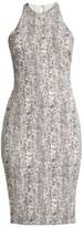 LIKELY Python Print Sheath Dress