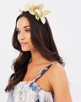 Morgan & Taylor Lavina Fascinator