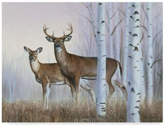 "Rusty Trademark Fine Art Frentner 'Deer In Birch Woods' Canvas Art, 32""x24"""