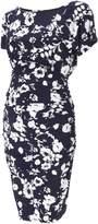 Isabella Oliver Ferndale Print Maternity Dress
