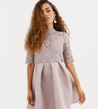 Little Mistress Petite lace upper skater dress