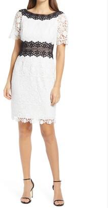 Shani Colorblock Lace Sheath Dress