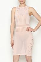 Hera Fishnet Dress