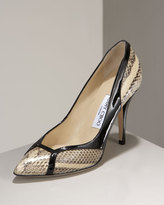 Lois Patent Watersnake Pump
