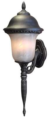 Glenn Special Lite Products Aire 1-Light Outdoor Sconce Special Lite Products Finish: Oil Rubbed Bronze, Shade Type: Seedy