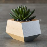 Williams-Sonoma Williams Sonoma Boxcar Single Planter