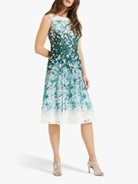 Phase Eight Angela Lace Detail Dress, Green/Multi