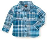 Tea Collection Plaid Shirt in Blue