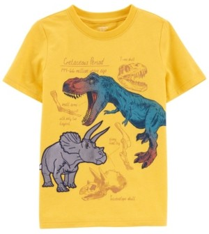 Carter's Little Boys Dinosaur Snow Yarn Tee