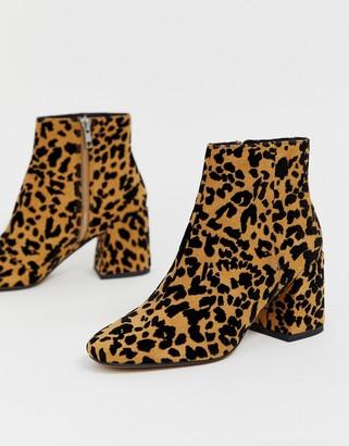 Asos Design DESIGN Rural leopard ankle boots-Multi