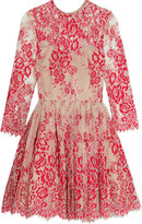 Alexis Bella embroidered tulle mini dress