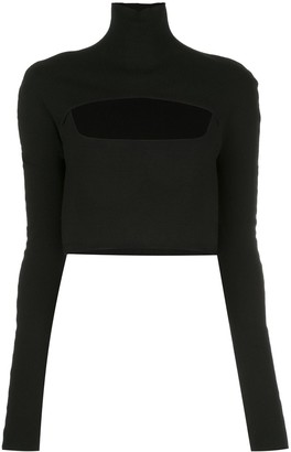 Dion Lee Cropped Funnel Neck Top