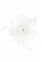 Quiz White Small Jewel Feather Fascinator