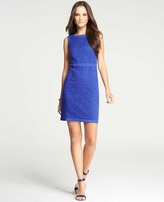 Ann Taylor Redefined Lace Sheath Dress