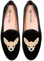 Del Toro Chihuahua Slipper
