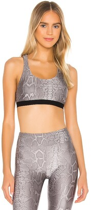 Koral Tax Infinity Sports Bra