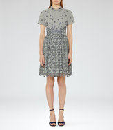 Reiss Emerson Pique Floral Dress